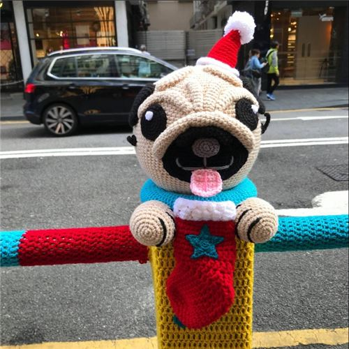 This adorable pug can't wait to see what's in its stocking!