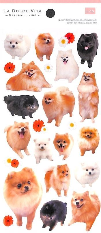 cute kawaii pomeranian dog animal stickers by Mind Wave